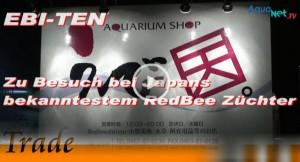 EBI-TEN – zu Besuch bei Japans bekanntestem RedBee Züchter